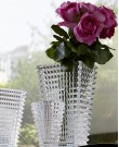 Eye Vase Large Clear (Baccarat)