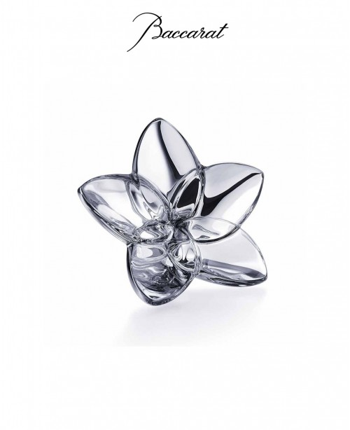 Silver Bloom (Baccarat)