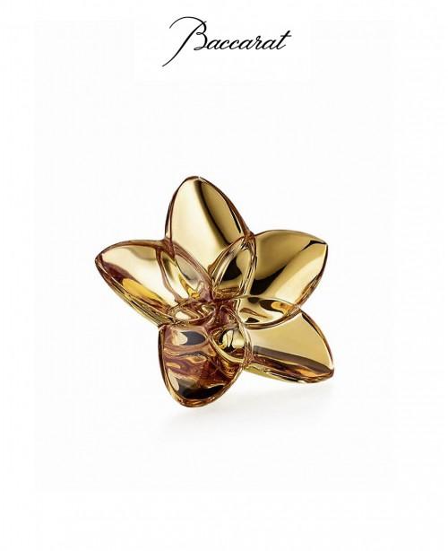 Gold Bloom (Baccarat)