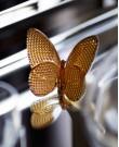 Lucky Butterfly Papillon Crystal Glass O...