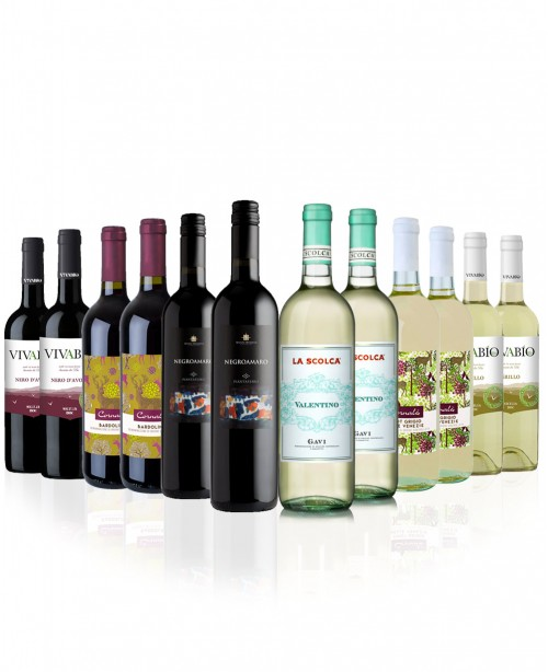 Gusto 12 bottles (Mixed Wine Case)