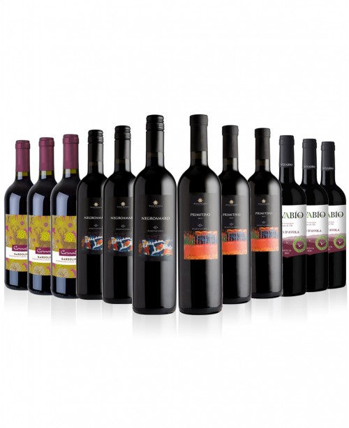 Italian Reds 12 bottles (Wine Mixed Case...